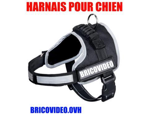 harnais-pour-chien-lidl-zoofari-julius-k9-test-avis-notice